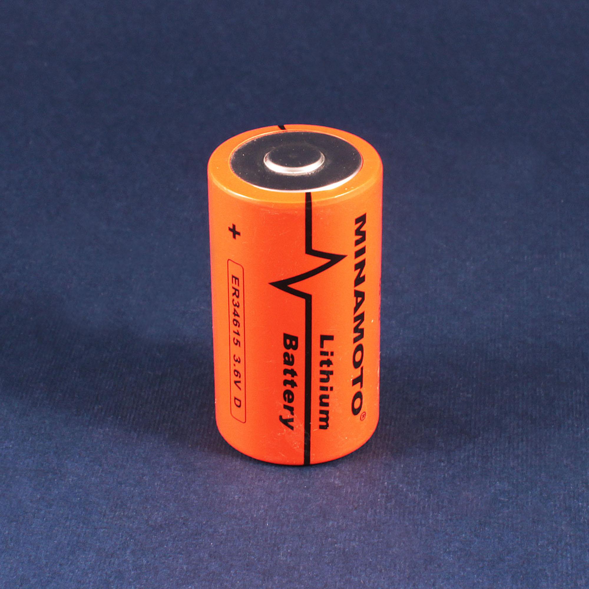 Батарейка r20 фото 4